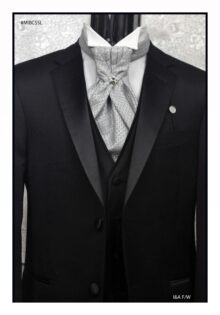 Formal Ascot Neck Ties