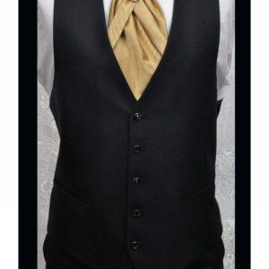 Gold Tuxedo Ties Accessories