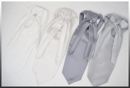 Ascot Men's Ties